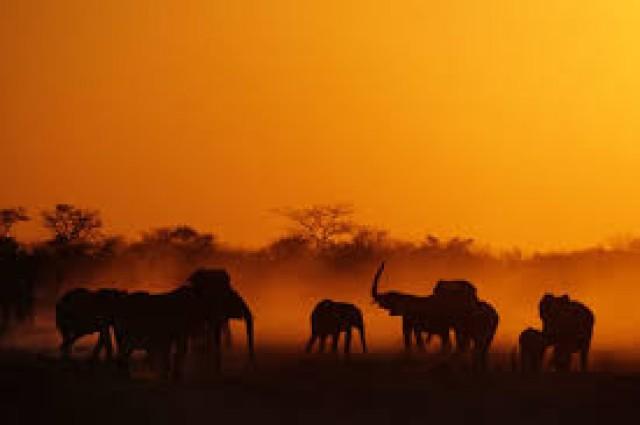 Franzi's Namibia-Tour